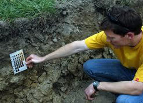 Scientist looking for hydric soil indicators